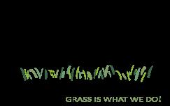 Verde Plus Lawn Care logo